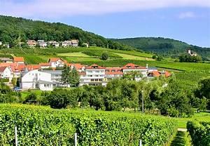 Komfort hotel sudpfalz terrassen gleiszellen for Hotel südpfalz terrassen