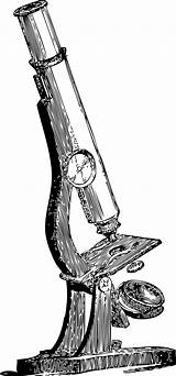 Microscope Clip Science Drawing Coloring Hooke Robert Clipart Vector Newton Pathologist Cliparts Isaac Svg Transparent Sir Publicdomains Slide Lab 1500s sketch template