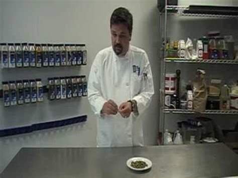 Pered Chef Spice Rack by The Chef S Academy Spice Rack Cardamom