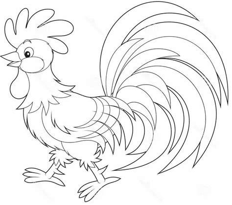 mewarnai ayam jantan yang unik chickens animals rooster