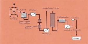 A General Flow Diagram Of A Purification Train In The