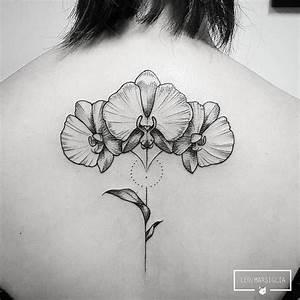 Dessin D Hirondelle Pour Tatouage : dessin d 39 orchid e pour tatouage bricolage maison et ~ Melissatoandfro.com Idées de Décoration