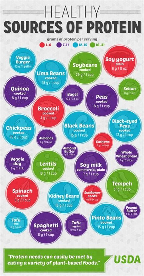 Best 25+ High Sources Of Protein Ideas On Pinterest  Protein In Food, Top Protein Foods And