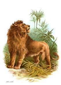 Vintage Lion Clip Art