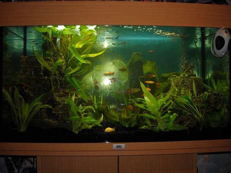 exemple aquarium juwel 125