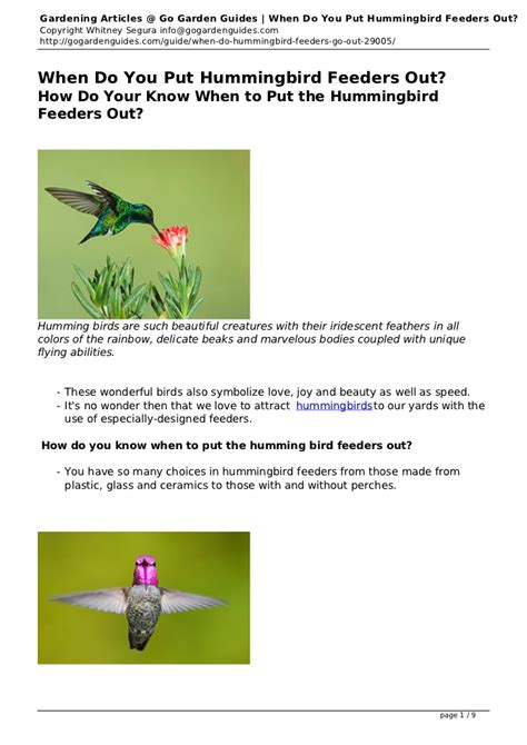 when do you put hummingbird feeders out