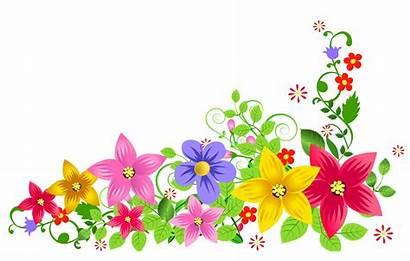 Transparent Floral Different Resolution Freepngimg