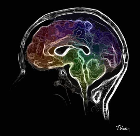 Digital Brain Wallpaper by Brain And Mind Digital By Tylir Wisdom