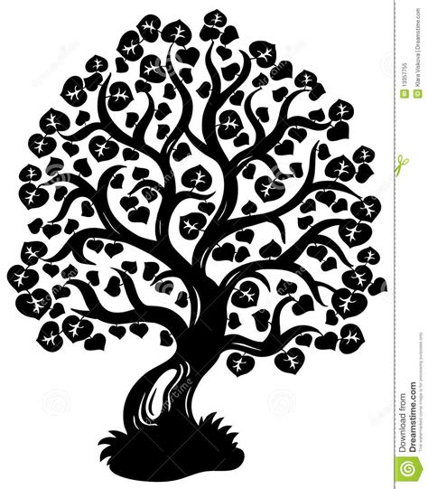 lime silhouette lime tree silhouette royalty free stock photo image
