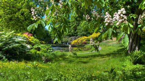 Обои весна 1600x900 картинки фото Hd обои весна 1600х900