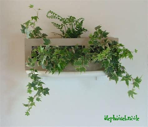 faire un cadre vegetal faire soi m 234 me un cadre v 233 g 233 tal r 233 cup st 233 phanie bricole