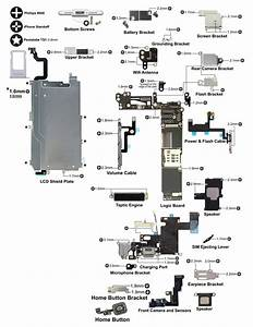 I Made A Disassembly Schematic For The Iphone 6   Infos In