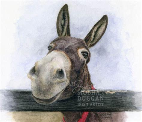 charity prints   donkey sanctuary siobhan duggan