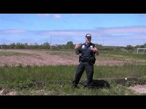 Suffolk County Police Dept Canine Section - YouTube