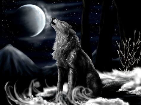 3d Wallpapers Wolf by Black Wolf Wallpapers Wallpaper Cave