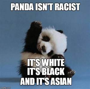 30+ Very Funny Panda Memes Images, Graphics & Gifs | Picsmine
