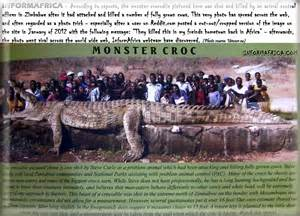 Huge Crocodile in Africa