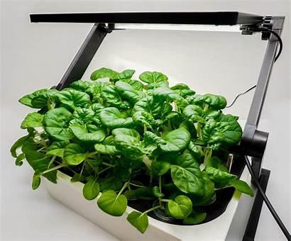 Energy Plant Grow Gardening Led Indoor Lights