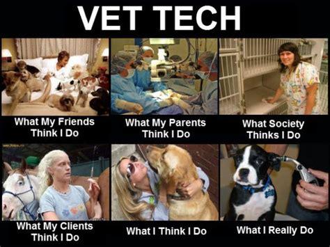 Vet Tech Memes - vet tech funny pictures