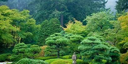 Garden Japanese Portland Nature Summer Flat Gardens
