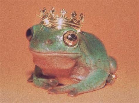 frog aesthetic