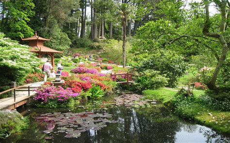 garden japanese wallpapers flower awesome