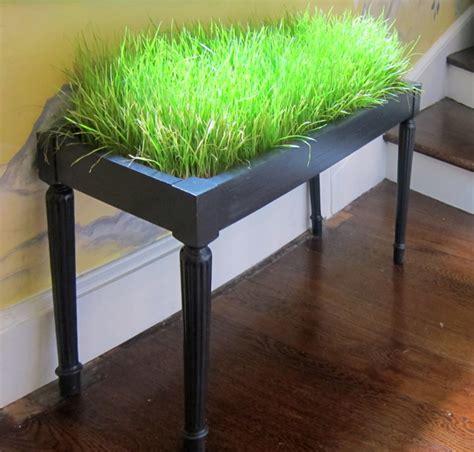 indoor plant decor design stylebook for houseplants
