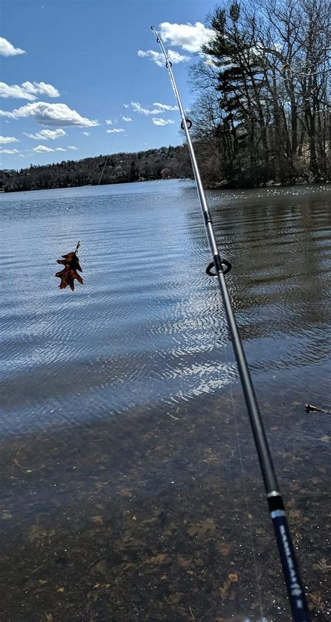 fishing pole fish tested bought comments struggle knows anyone did much very last summer