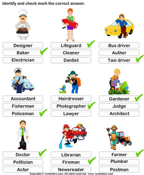 identify  job  occupation worksheet turtle diary