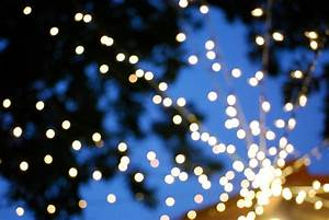 Claire White  Twinkle Lights