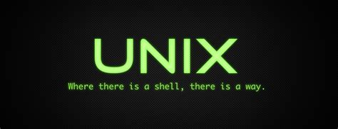 find  pattern  files  rename   unix techosaurs