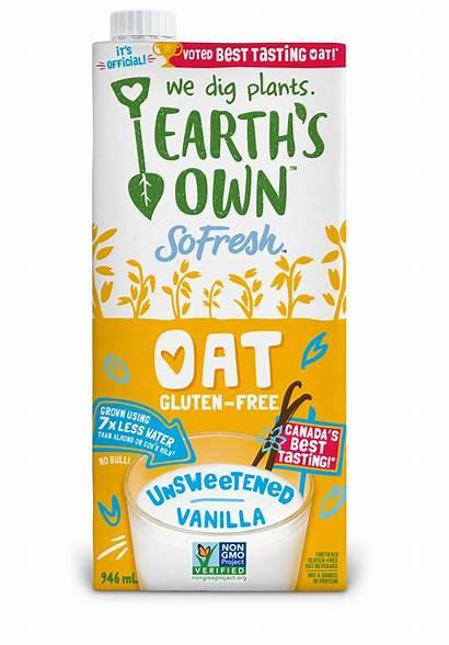 Oat Earth Milk Own 946ml Creamy Vanilla