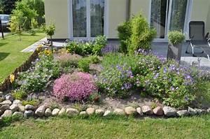 Blumen Im Garten : vorher nachher 1 woche blumen pflanzen wachstum hausbau blog ~ Bigdaddyawards.com Haus und Dekorationen