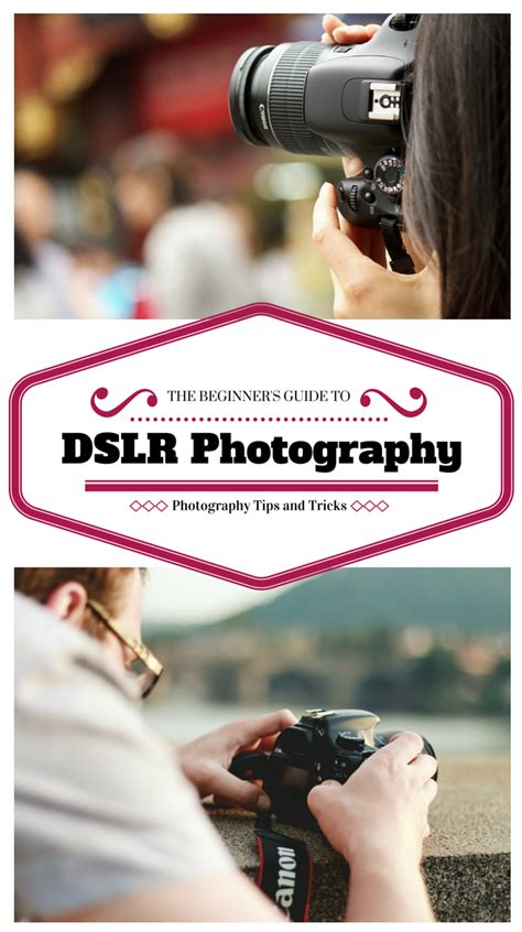 beginners guide  dslr photography photography tips