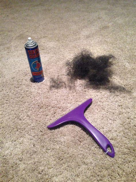 static guard squeegee  stubborn pet hair