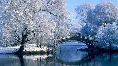 Winter Bridge Snow Lake Nature Landscape Backgrounds
