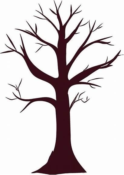 Trunk Tree Clipart Autumn Teaching Activities Trees
