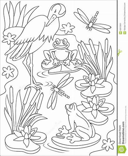 Swamp Coloring Pages Pantano Nelson Miss Missing