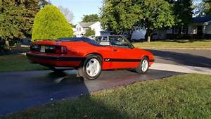 1986 Ford Mustang Gt 5 0 Convertible 5 Speed Manual