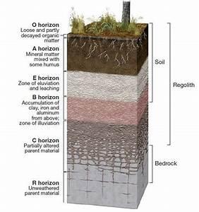 Soil Profile Upsc