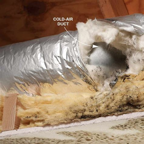 tips  removing mold  mildew mold mildew