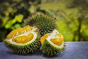 Durian Fruit Tropical