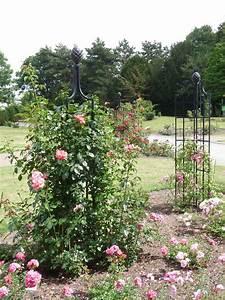 Rankhilfe Rosen Freistehend : rankhilfe fr rosen selber bauen rosen rankhilfe fa r halbrund cm holz aus metall rankhilfen ~ Orissabook.com Haus und Dekorationen