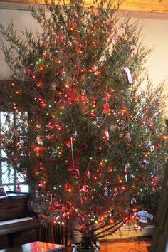 1000 images about j 245 ulud on pinterest christmas tree