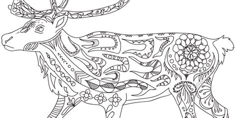 colouring pages canadian museum  nature