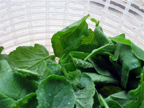 cuisiner les feuilles des légumes