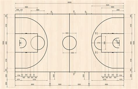 court dimensions fiba basketball court dimensions 2012 www pixshark com images galleries with a bite