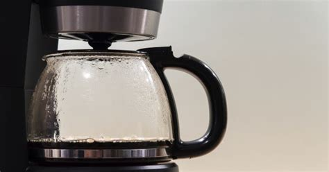 The OnLine Buzzletter Your Coffee Maker Is Full Of Mold
