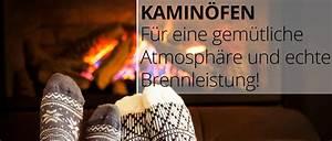 2 Kaminöfen An 1 Schornstein : markenschornstein schornstein grill kamin fen g nstig ~ Articles-book.com Haus und Dekorationen