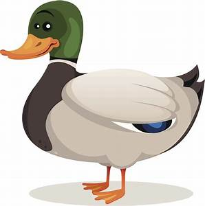 Duck, Duck... Grey Duck? Goose? - KS95 94.5 Today's ...